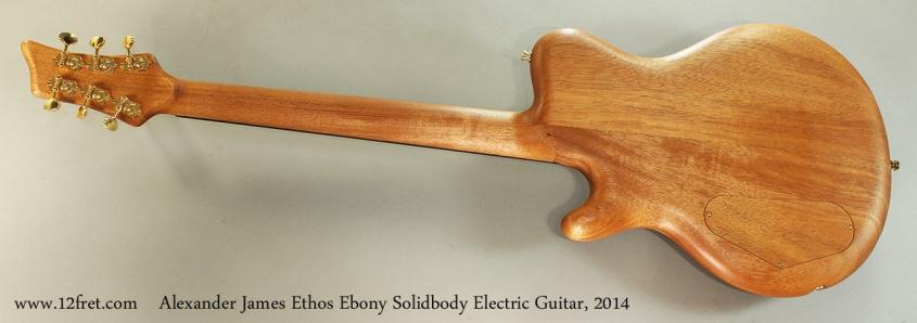 Alexander James Ethos Ebony Solidbody Electric Guitar, 2014 Full Rear View