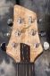 Alexander-James_Ursa-Maple-Guitar_Headstock