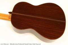Alhambra Linea Profesional Classical Guitar Cedar Rosewood   Back View