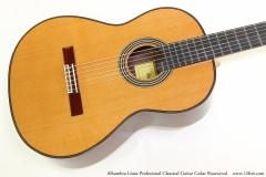 Alhambra Linea Profesional Classical Guitar Cedar Rosewood   Top View