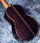 alhambra_luthier_india_back_4