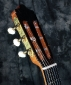 alhambra_luthier_india_head_1