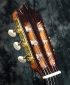 alhambra_luthier_india_head_2