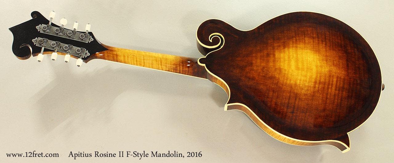 Apitius Rosine II F-Style Mandolin, 2016 Full Rear View