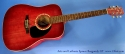 art-and-lutherie-spruce-burgundy-gt-full-1