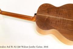Avalon Ard Ri A3 330 Walnut Jumbo Guitar, 2016 Full Rear View