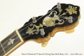 Bacon Professional FF Special 5 String Open Back Banjo, 1914 Head Front View