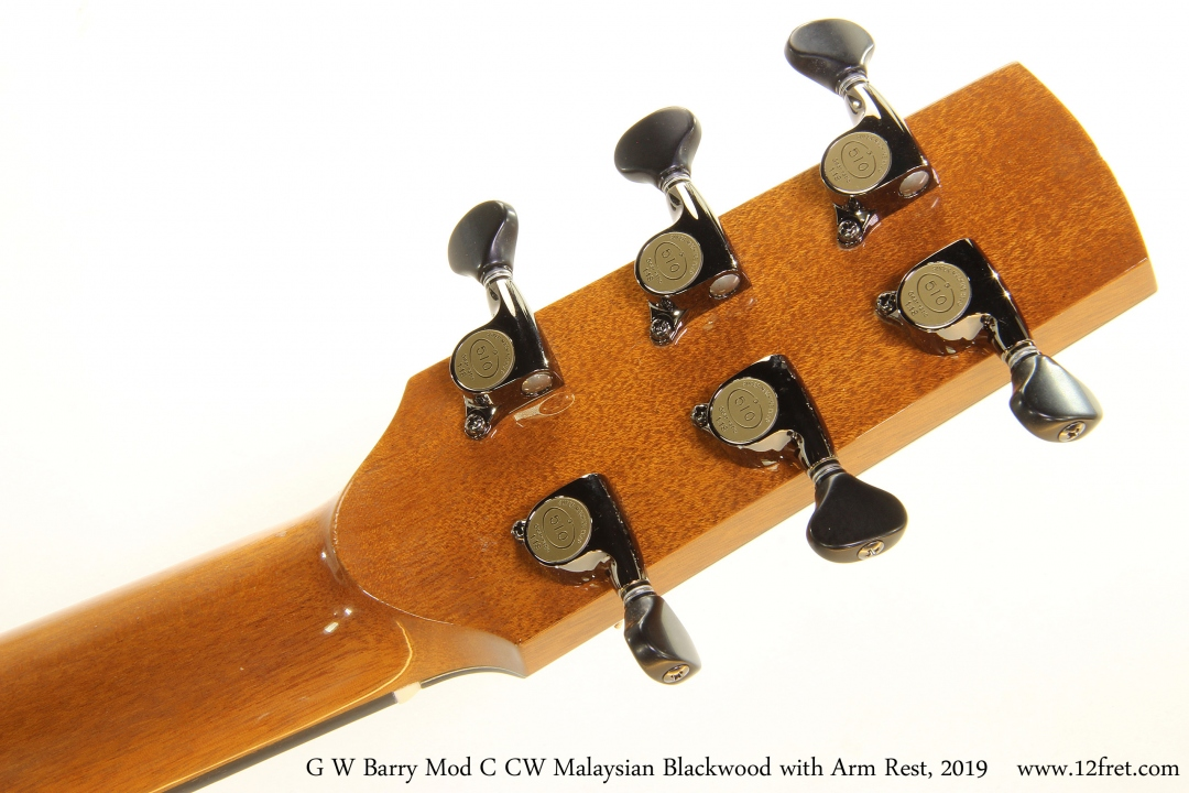G W Barry Mod C CW Malaysian Blackwood with Arm Rest, 2019 Head Rear View