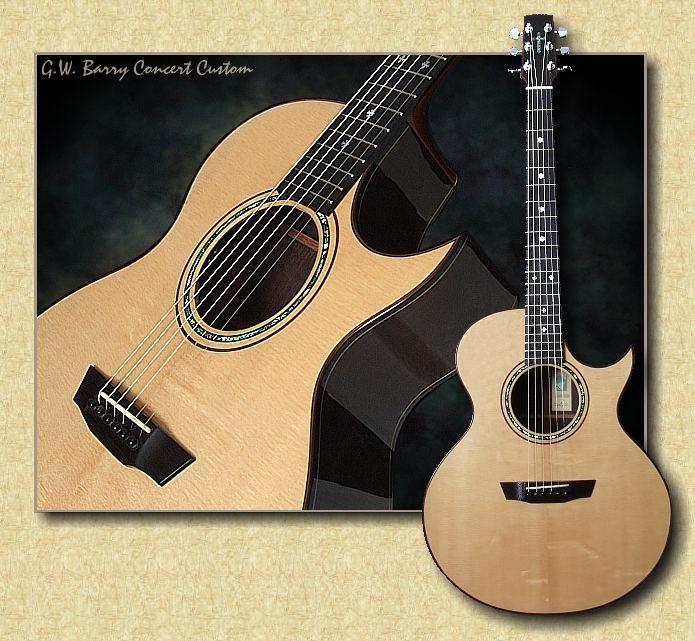 Barry_Concert_Custom_PB_guitar