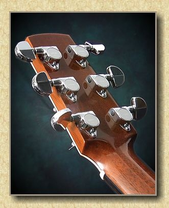 Barry_Concert_Custom_PB_guitar_b