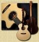 Barry_Ziricote_Snakewood_Concert