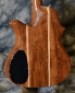 BC Rich_Seagull_1980(C)_back detail