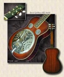 Beard_goldtone_PBS_guitar