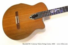 Beardsell 9C Cutaway Nylon String Guitar, 2009 Top View