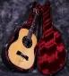 benko_guitar_in_case