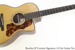 Boucher JP Cormier Signature 12-Fret Guitar No.3 Full Rear View