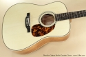 Boucher Guitars Studio Escrito Goose top