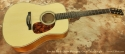 Boucher Studio Mahogany Goose Dreadnought full front view