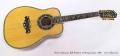 Bozo Podunavac Bell Western 12 String Guitar, 1989 Full Front View