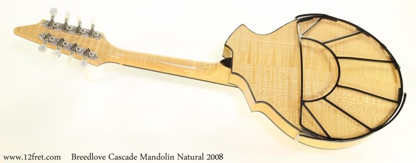 Breedlove Cascade Mandolin Natural 2008  Full Rear View