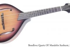 Breedlove Quartz OF Mandolin Sunburst, 2005 Full Front View