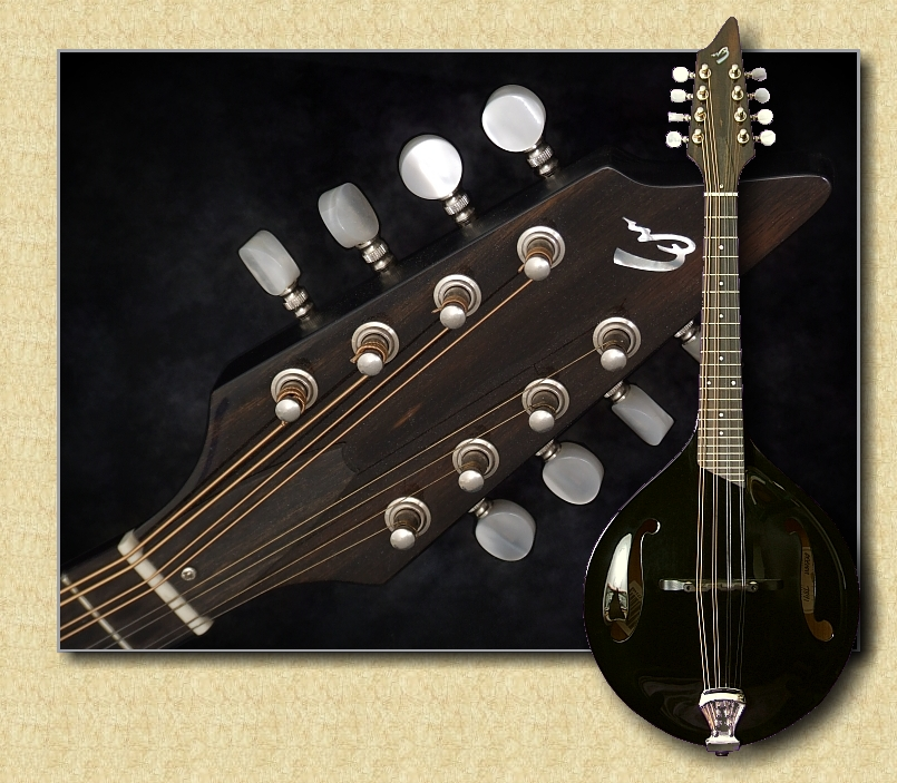 Breedlove_Oregon_mandolin