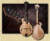 Breedlove_Quartz_FF_mandolin_J9a