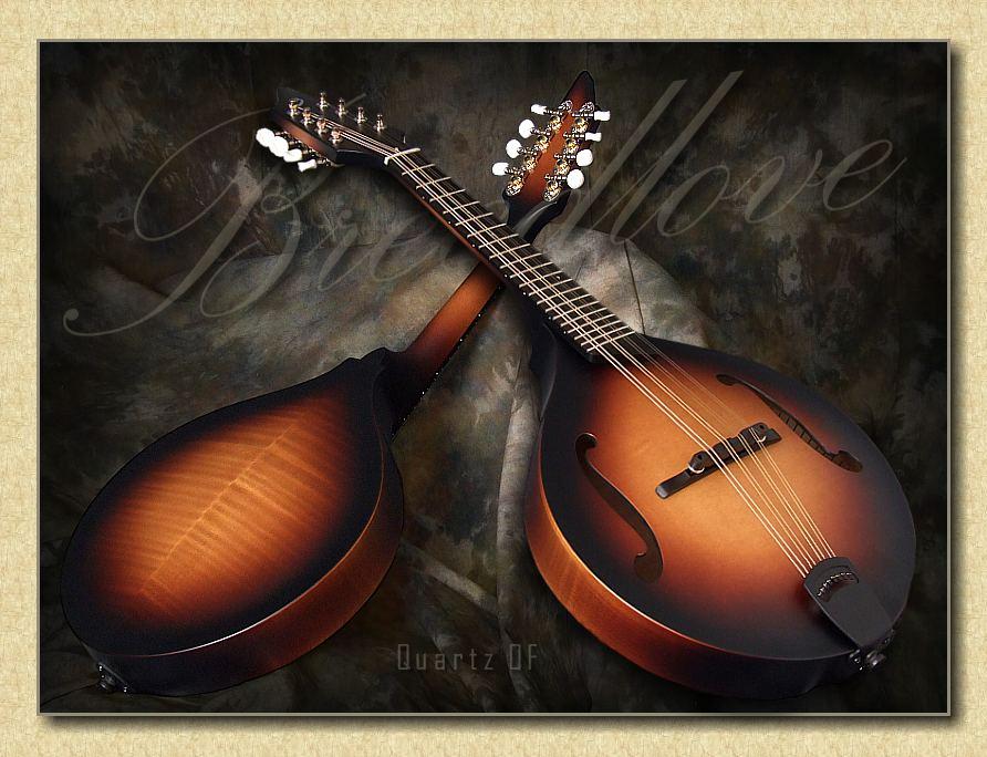 Breedlove_Quartz_OF_mandolin_sunburst_may9