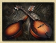 Breedlove_Quartz_OF_mandolin_sunburst_may9