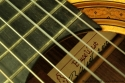 Bruce West Rosewood Classical Guitar Traditional Oil Finish, 2010 Label View