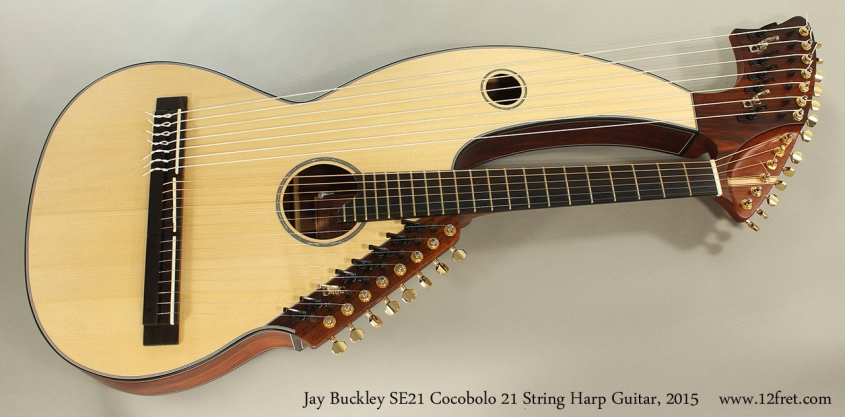 Jay Buckley SE21 Cocobolo 21 String Harp Guitar, 2015 Full Front View