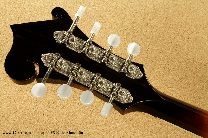 Capek F5 Basic Mandolin head rear