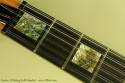 carvin-lh-12-2011-cons-inlay-2