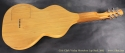 Cole Clark Violap Horseshoe Lap Steel 2003 full rear view