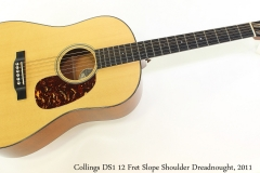 Collings DS1 12 Fret Slope Shoulder Dreadnought, 2011 Full Front View
