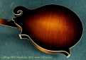 Collings MF5 Mandolin  back