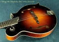 Collings MF5 Mandolin  top driver's side