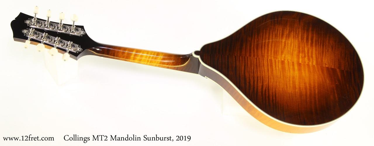 Collings MT2 Mandolin Sunburst, 2019 Full Rear View