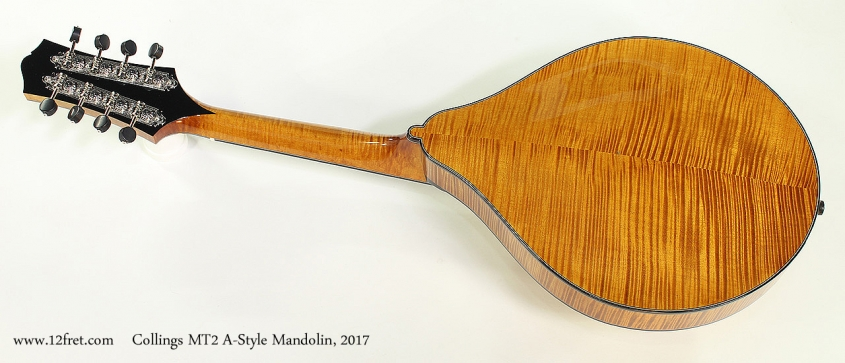 Collings MT2 A-Style Mandolin, 2017 Full Rear View