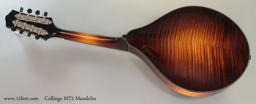 Collings MT2 Mandolin Full Rear View