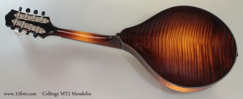 Collings MT2 Mandolin Full Rear View