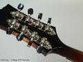 Collings MT2 Mandolin Head Rear
