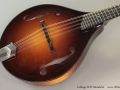 Collings MT2 Mandolin Top