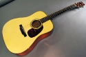 Collings_d1g_cons_full_3