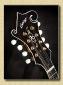 Collings_MF5_mandolin_Al8b