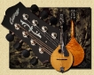 Collings_MT-20_Mandolin
