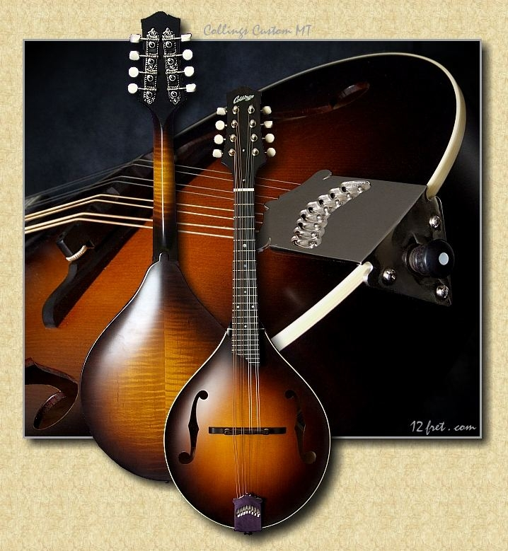 Collings_MT_mandolin_N7