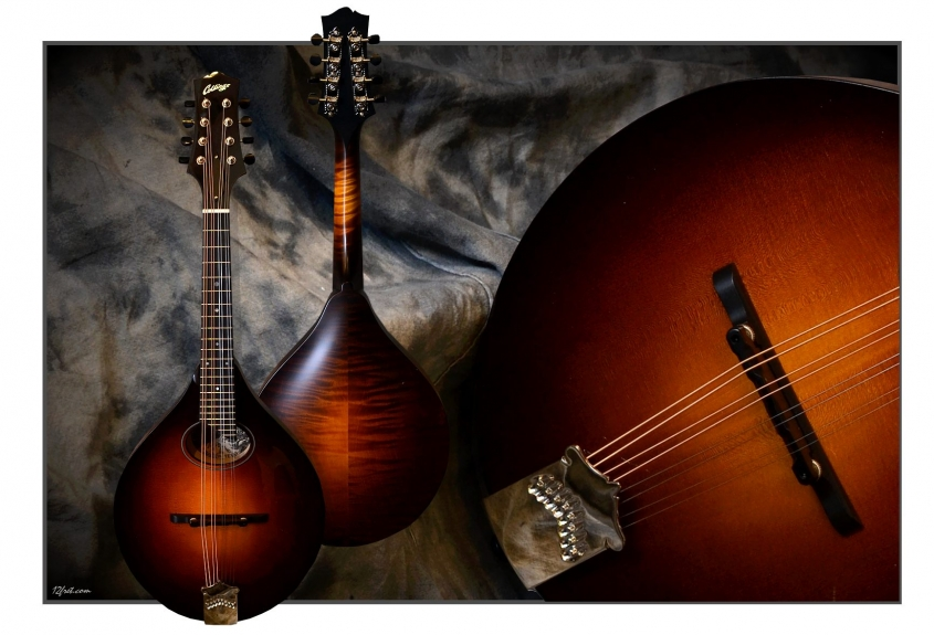 Collings_MTO-GT