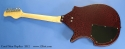 coral-sitar-replica-full-rear-1