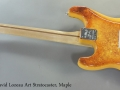 david-lozeau-fender-strat-maple-full-rear